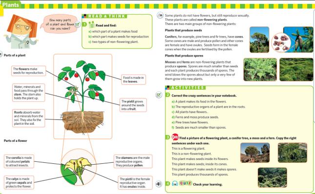 PLANTS APPENDIX